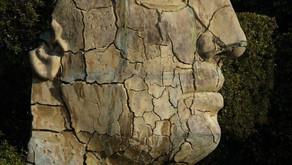 PALLIAGUIDE : Mise à jour complète du domaine « Confusion mentale »