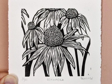 Meet the printmaker - Shelly Brown Illustration