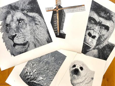 Meet the printmaker - LonghurstLino