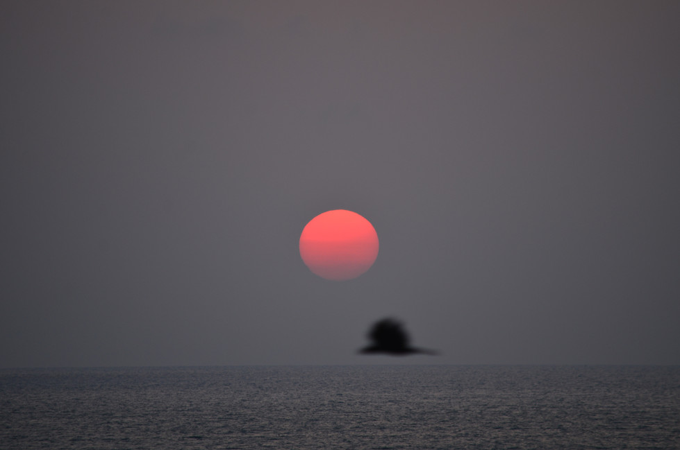 Sri Lanka32
