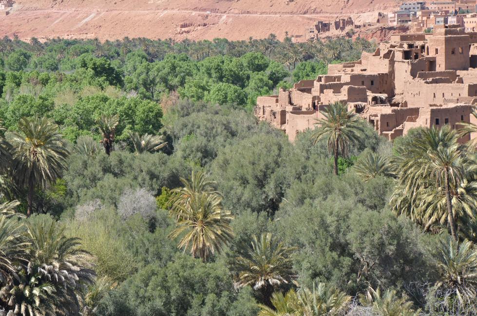 Marokko21