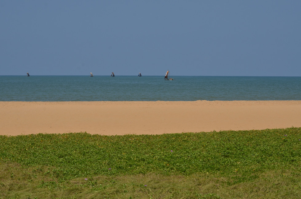 Sri Lanka31
