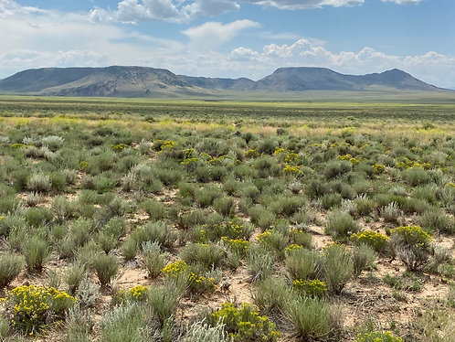 The Perfect Rio Grande View-$129 Monthly Owner Financing
