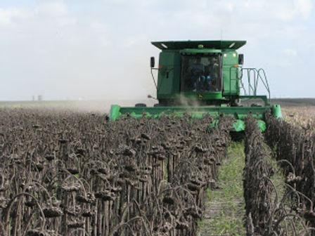 Deere Harvest.jpg