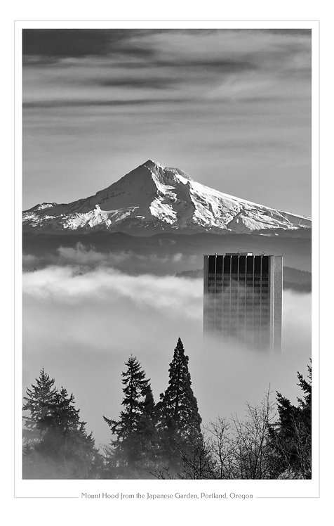 Mount Hood from Japanese Garden  13x19