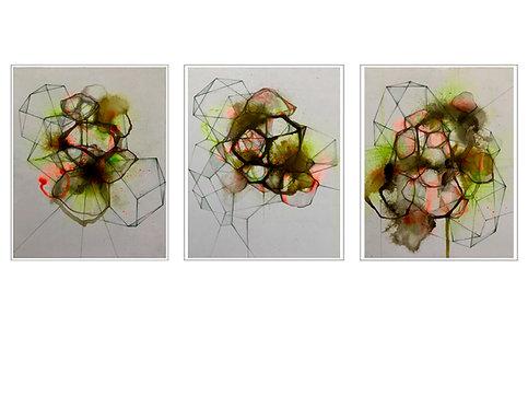 Mutations triptyche 8x10