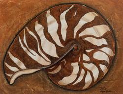 Nautilus #2