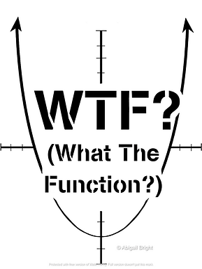 What the Function
