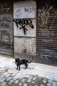 Backstreet Bowser - Barcelona