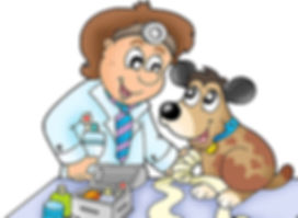 veterinar-i-sobachka.jpg