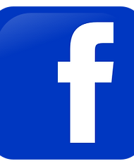 256px-Facebook_icon.svg.png