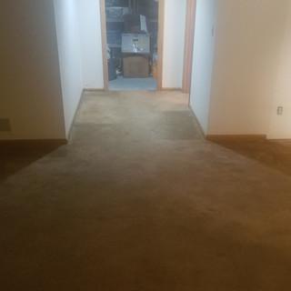 Damaged Carpet Basement
