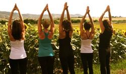 Yoga Tuscany