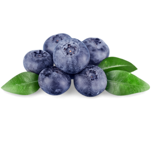 Blueberry Muffin Tealights
