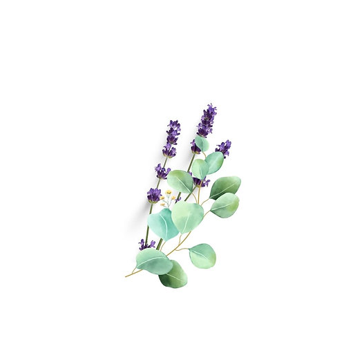 Eucalyptus & French Lavender Melts