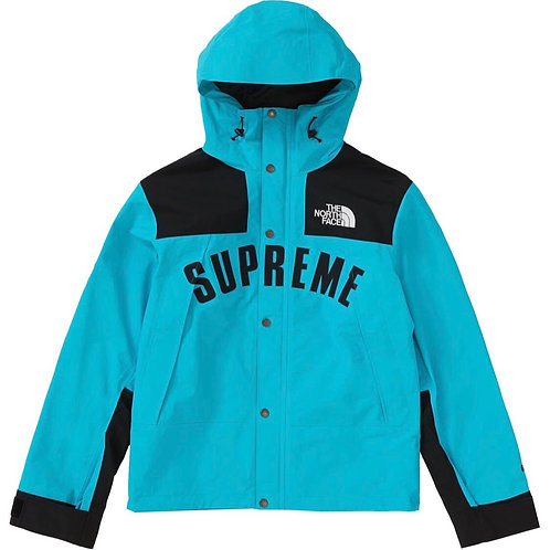 Supreme TNF arc logo Mountain parka