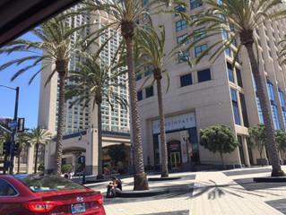 San Diego Dreaming