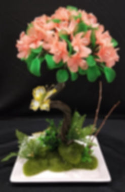 Bonsai 4.jpg