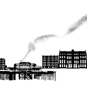 Brighton Panorama