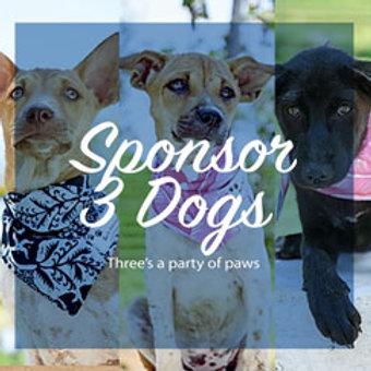 Sponsor 3 Dogs