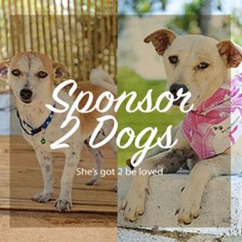 Sponsor 2 Dogs