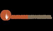 sandfire_logo.png