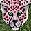 Thumbnail: Cheetah 2x3