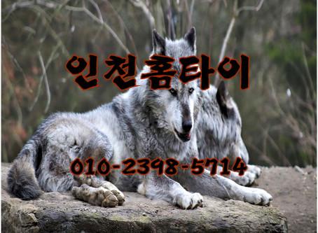 부천 고강동 출장타이마사지 신흥동 홈타이 받는방법