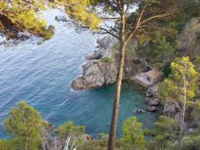 9. Costa Brava…and Birds galore!! Llafranc to Tarragona