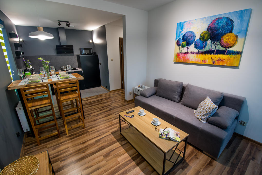 Kustronia Apartment-36.JPG
