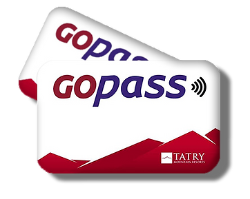 gopassys.png