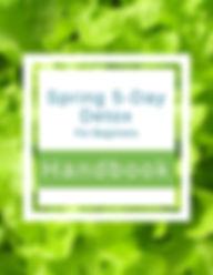 Handbook Spring Web.jpg