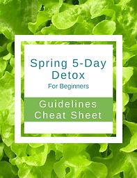 Guidelines Spring Web.jpg