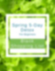 Blank List Spring Web.jpg