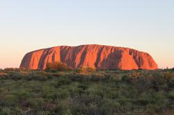 ozway rejse Uluru (Ayers Rock)