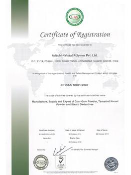 OHSAS-18000-0011.jpg