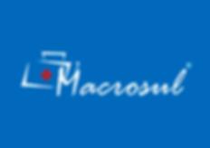Logo macrosul.png