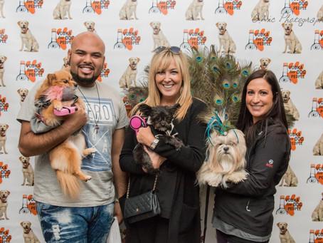 Cleveland Dog Fashion Show for Keep A Breast Foundation