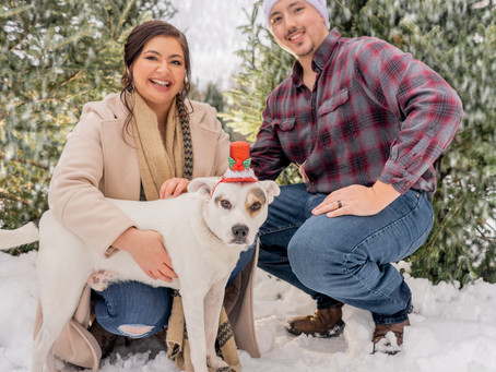 Juliana, Chase, and Bandit's Holiday Session!