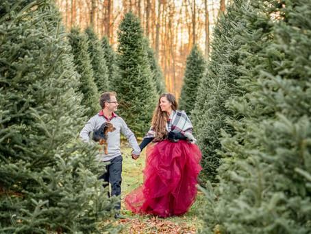 Lauren, Josh, and Dori's Holiday Tree Farm Session!