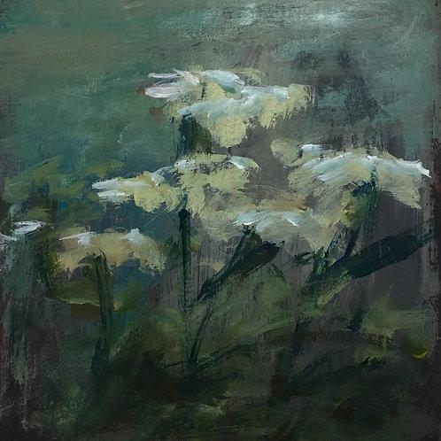 Berta Goldwaser, 'Flores 2'