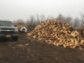 pile of wood.JPG