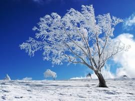 Elke blogt: Winter musthaves