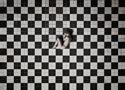 'Checkers'