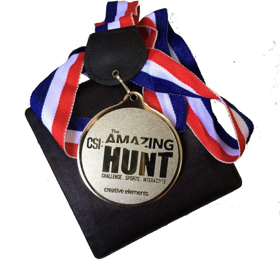 CSI medal