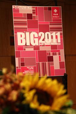 2011 Datum Big 0007.JPG