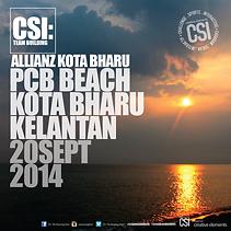 CSI 2014 AllianzKBR PCB