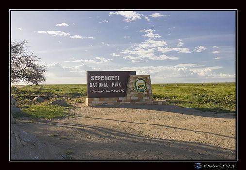 Entrée_Serengeti_-_Cadre_Paysage_-_Plai