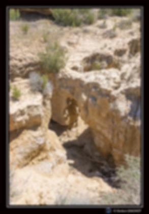Porte dans canyon Portrait - Bardenas -