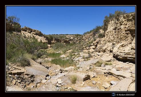 Canyon  Bardenas 10 - Paysage - Canon EO